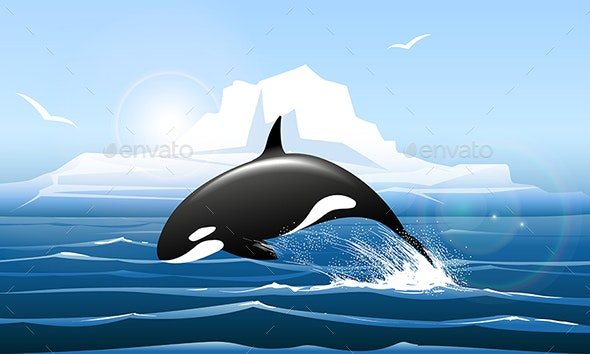 Orca or Killer Whale Jumps Out of the Water - Animals Characters