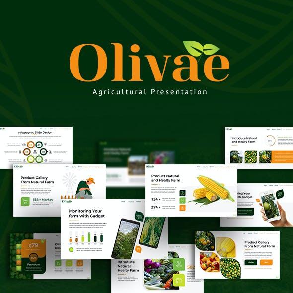 Olivae Agricultural Presentation Template