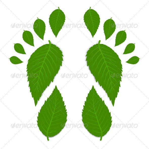 Green Footprint From Leaves