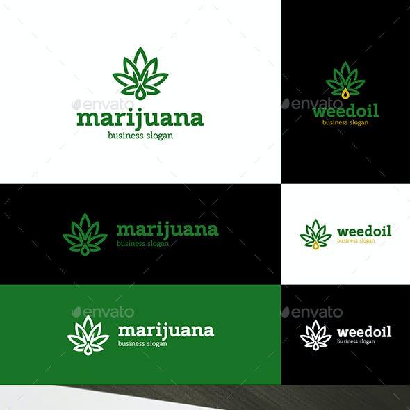Marijuana Weed Oil Logo Cannabis Leaf and Letter M