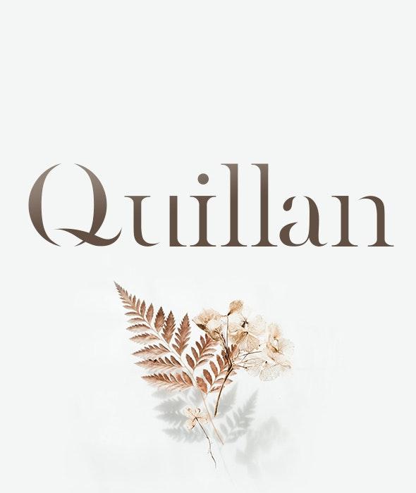Quillan - Fonts