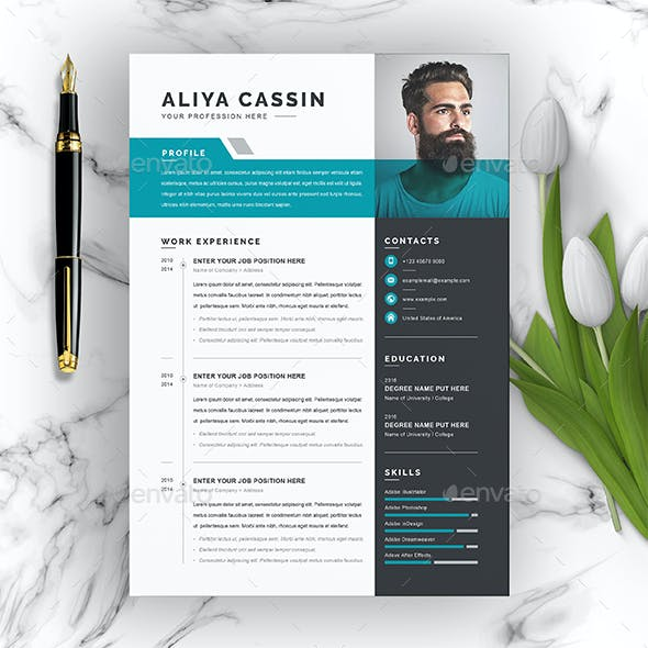 Cv Professional Stationery And Design Templates