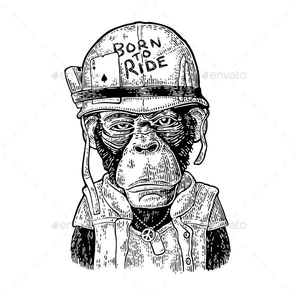 Monkey in Soldier Helmet Vintage Black Engraving - Animals Characters