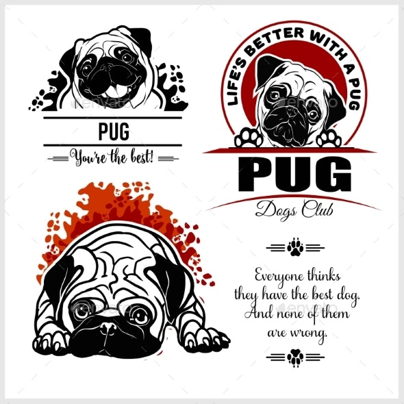 Pug - Vector Set - Animals Characters