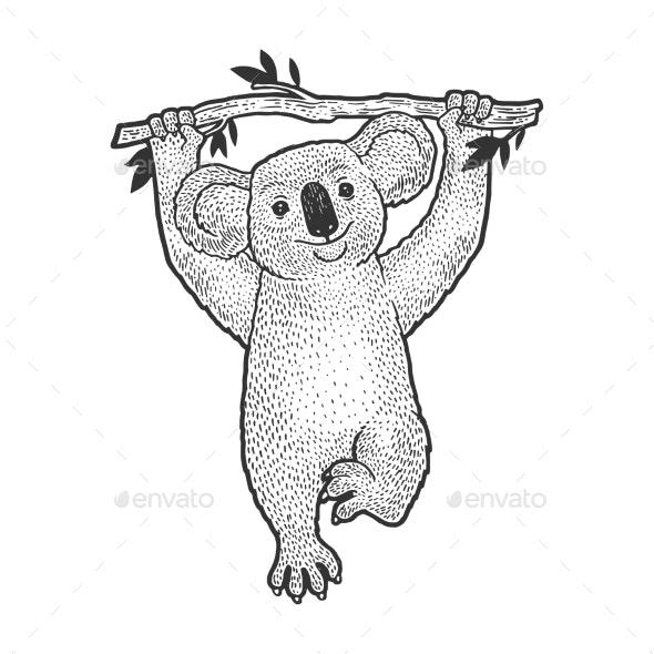 Koala Bear On Tree Sketch Engraving Vector By Alexanderpokusay Graphicriver