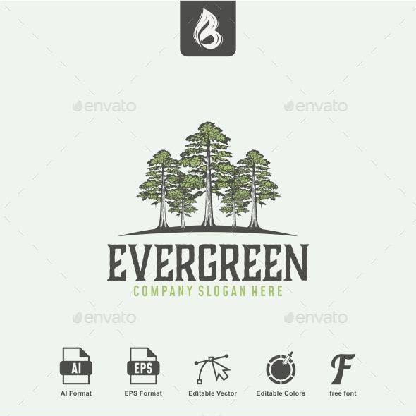 Evergreen Logo - Tree Logo