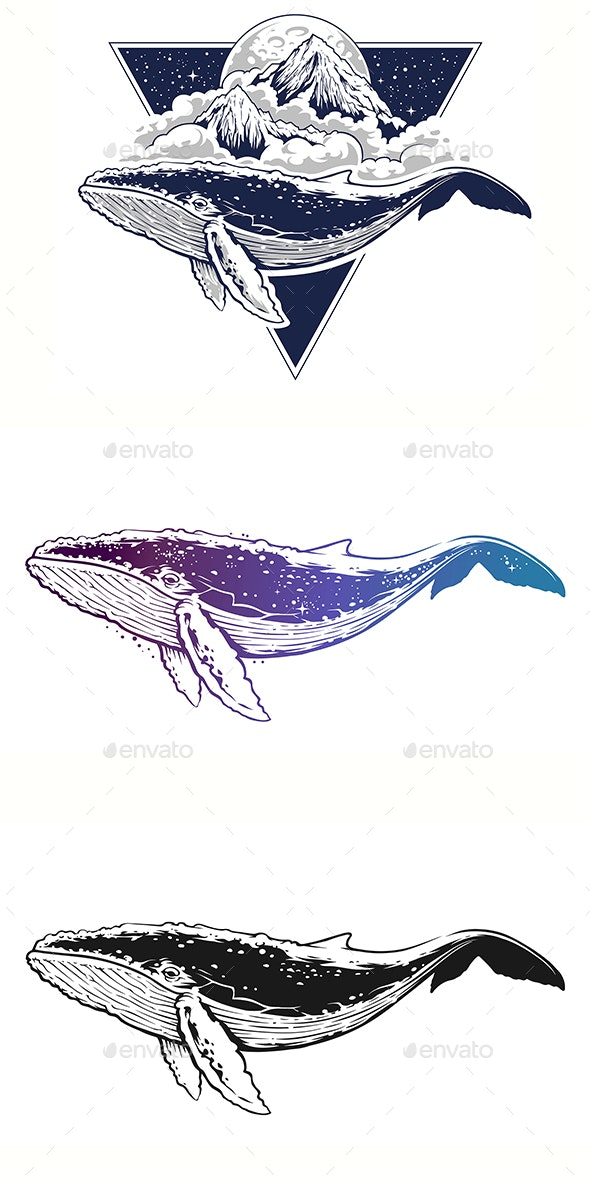 Whale Vector Art - Animals Characters
