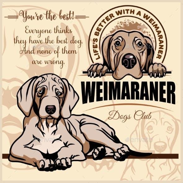 Weimaraner Vector Set