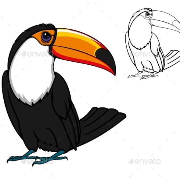 Exotic Tropical Toucan Bird Cartoon Animal