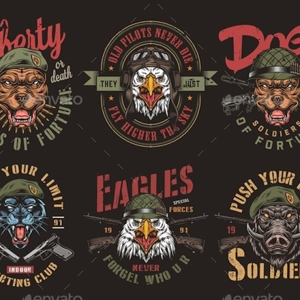 Vintage Military Colorful Badges