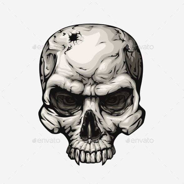 Human Skull Front on White - Miscellaneous Vectors