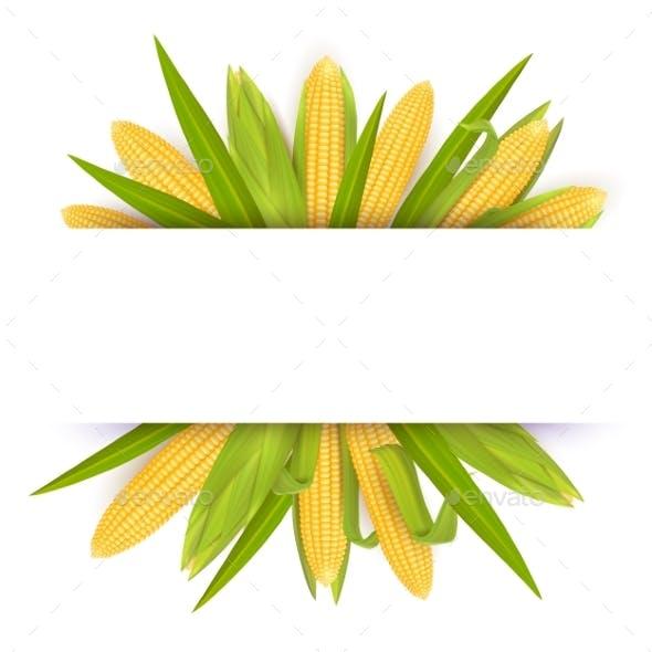 Corn Frame Card Template