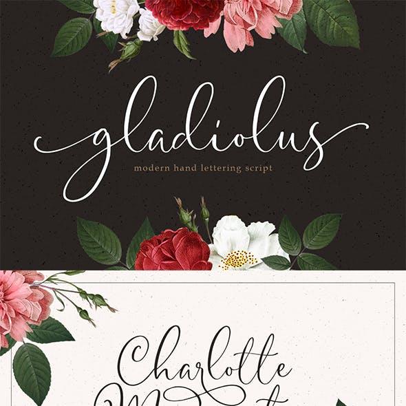 Gladiolus - Modern Calligraphy
