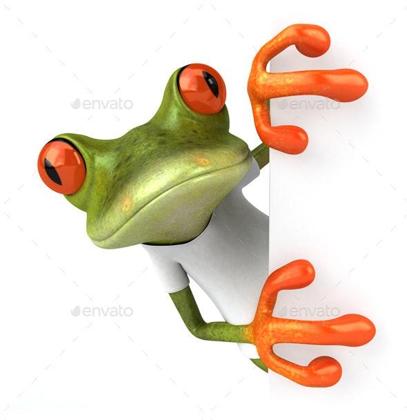 Green frog - Animals Illustrations