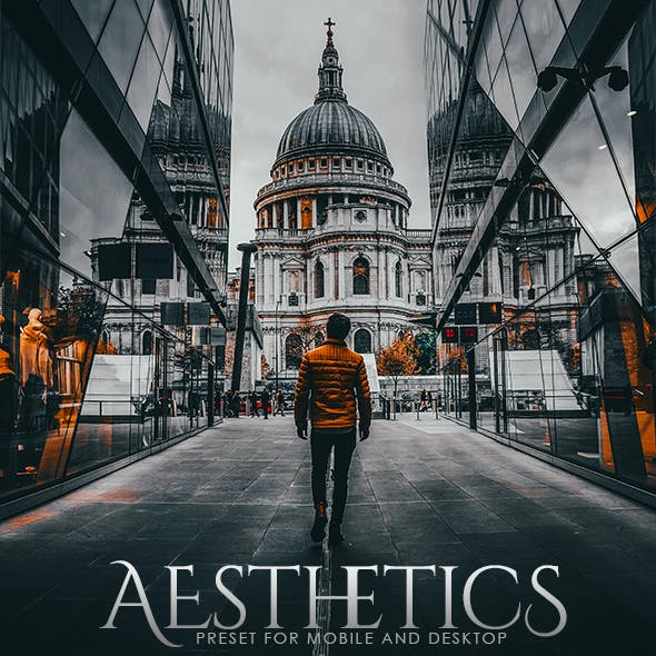 Aesthetics Lightroom Preset