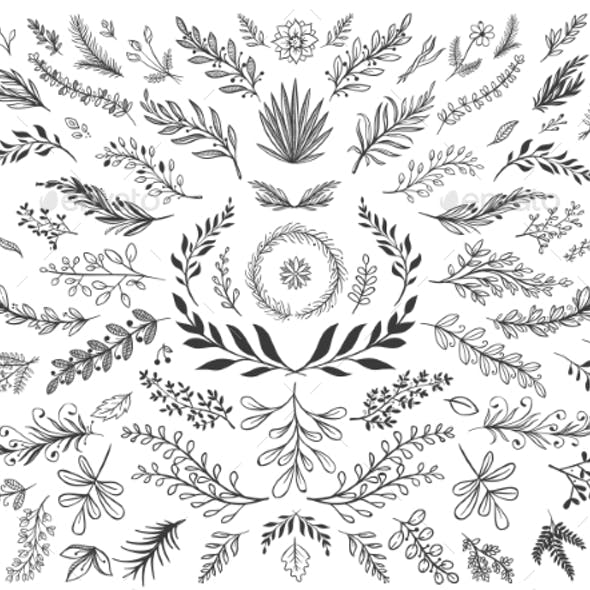 Hand Drawn Floral Decor Leaves. Sketch Ornamental