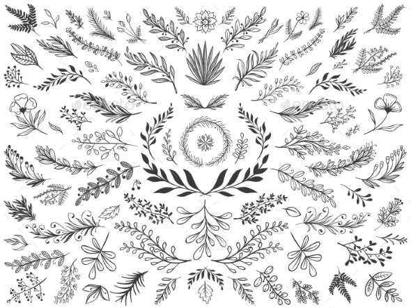 Hand Drawn Floral Decor Leaves. Sketch Ornamental - Flourishes / Swirls Decorative