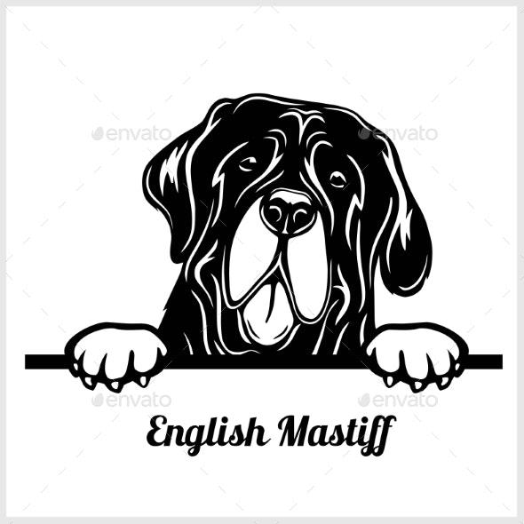 Dog Head English Mastiff Breed Black and White - Animals Characters