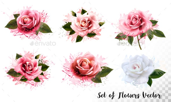 Set of Colorful Abstract Flowers Vector - Flowers & Plants Nature