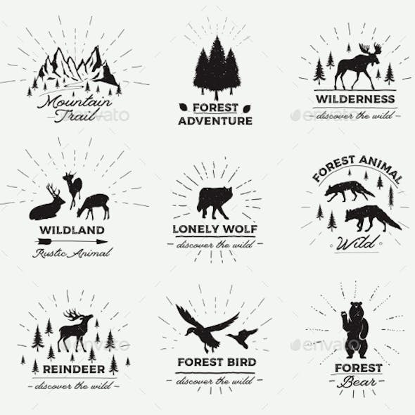 Outdoor Vector Emblems Set of Wilderness Quotes