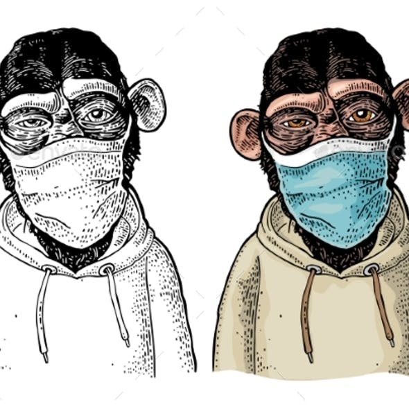 Monkey Dressed in the Hoodie and Medical Mask
