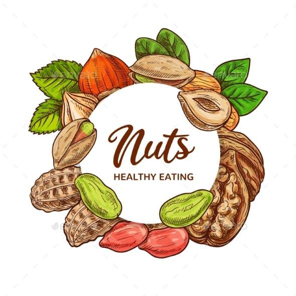 Nuts Sketch, Legume Beans