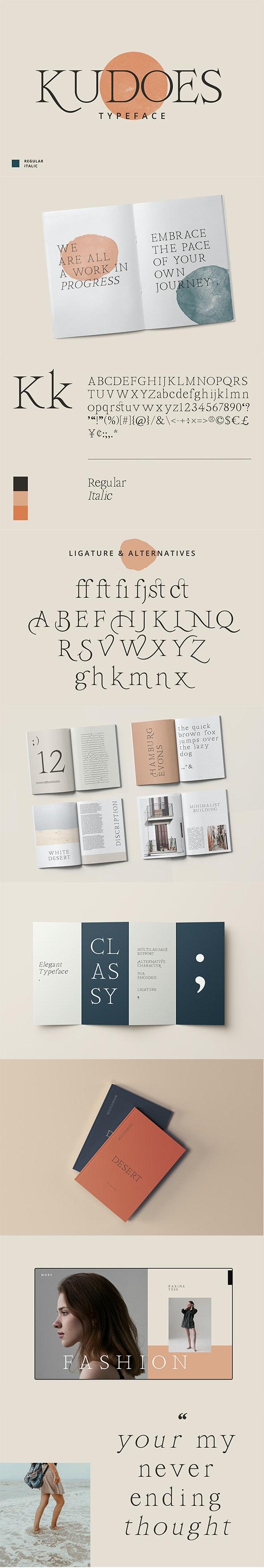 Kudoes Typeface - Serif Fonts