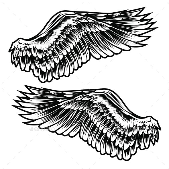Wings Bird feather Black & White Tattoo Vector 1