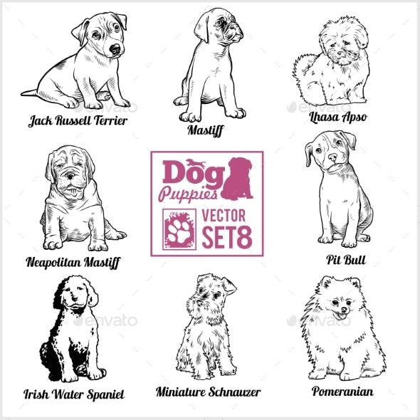 Dog Puppies - Vector Set. Funny Dogs Puppy Pet