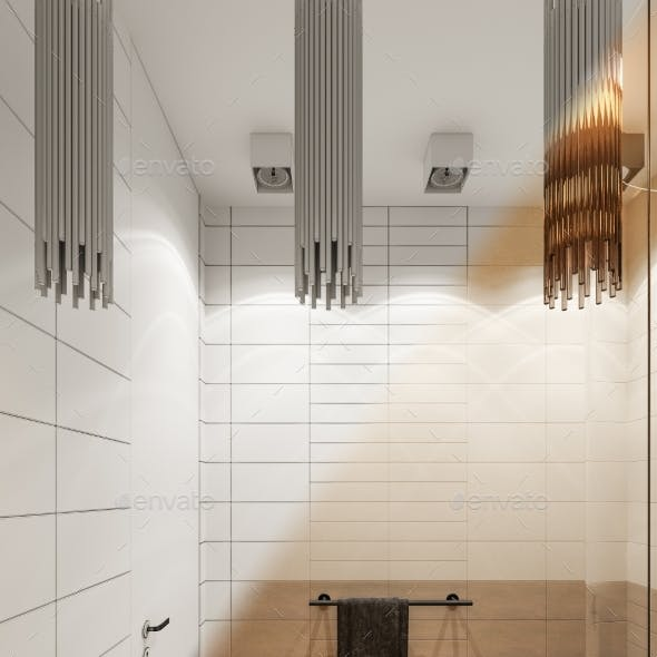 3d Render Interior Design of the Bathroom with a