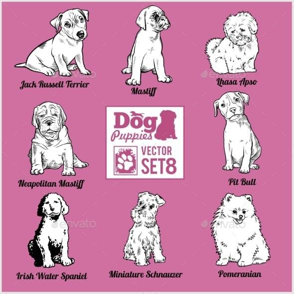 Dog Puppies - Vector Set