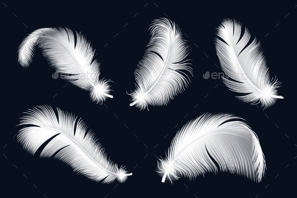 Isolated White Feathers Set - Miscellaneous Vectors