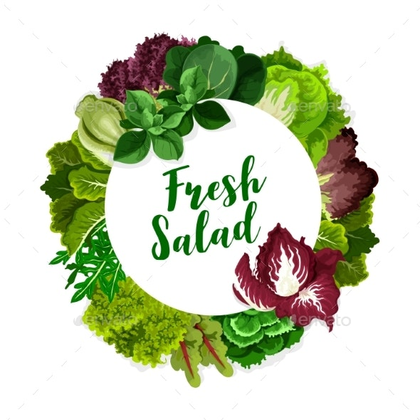 Lettuce Salad Leaves - Food Objects