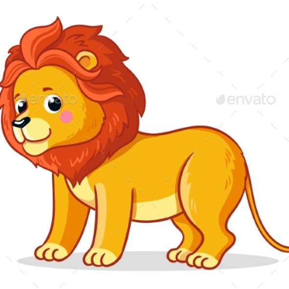 Young Lion Stands on a White Background