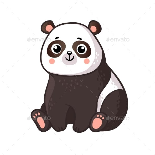 Panda Sits on a White Background