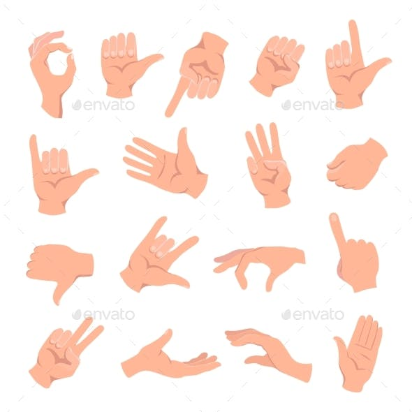 Set of Hands in Different Gestures
