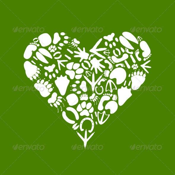 Heart of an animal2