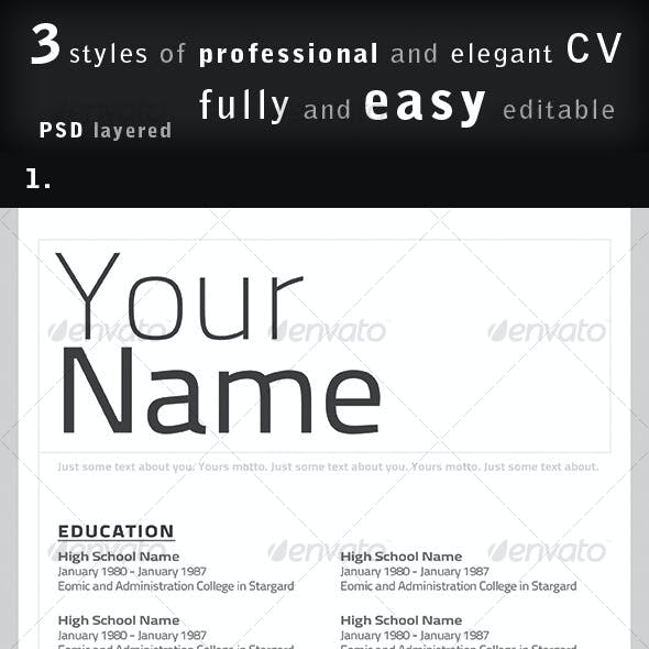 Professional CV / Resume in 3 styles