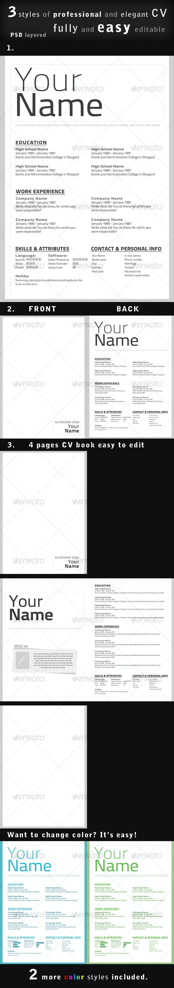 Professional CV / Resume in 3 styles - Miscellaneous Print Templates