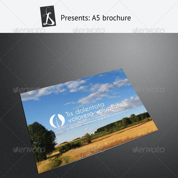 A5 Brochure 2