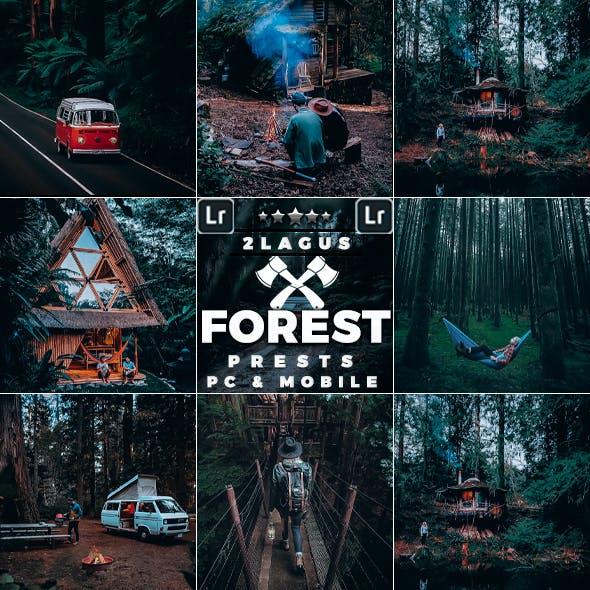 Forest Moody-Travel Presets for Mobile and Desktop Lightroom