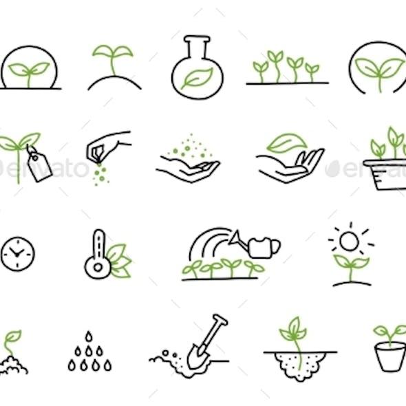Set of Growing Seedlings Icons