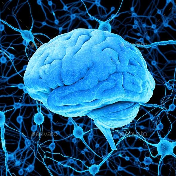 Blue Human Brain and Neurons 3D Render