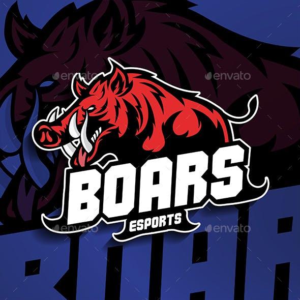 Esport Boar Concept