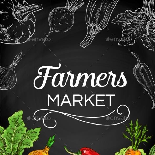 Fresh Farm Vegetable Chalk Sketches on Blackboard