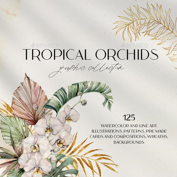 Tropical orchids. Watercolor collection