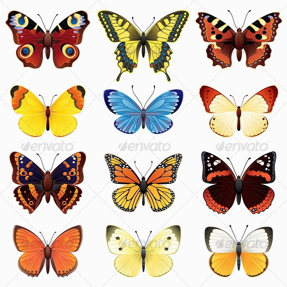 Butterfly set - Animals Characters