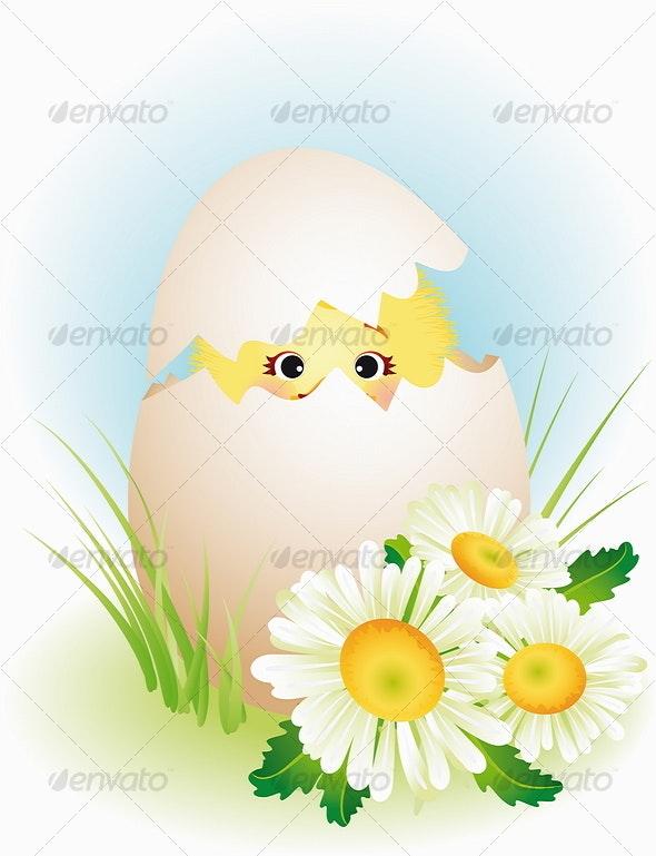 Chick - Characters Vectors