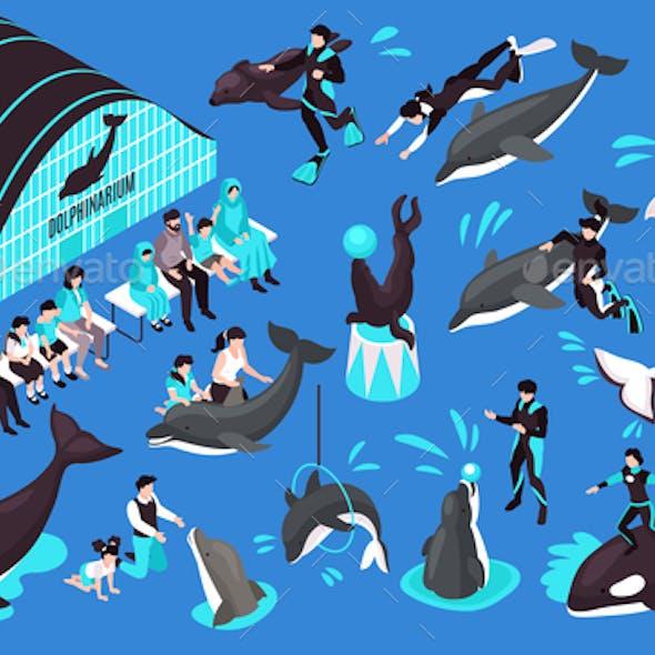 Dolphinarium Isometric Set