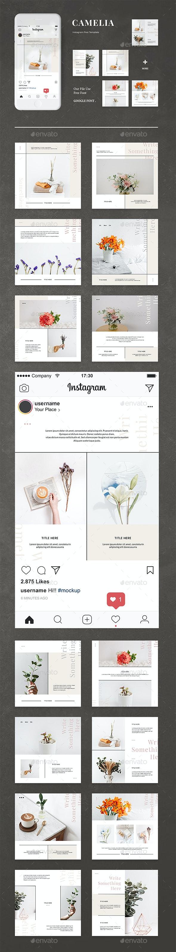 Camelia - Instagram Post Template - Social Media Web Elements